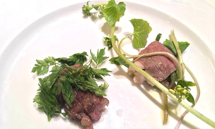 山菜を使った美味しい料理