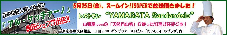 5月15日(金)、ズームイン!!SUPERで放送 レストラン YAMAGATA Sandandelo