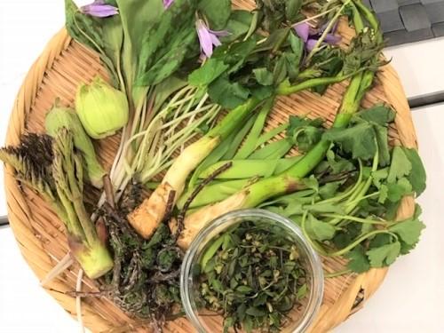 美味しい山菜の食べ方講座