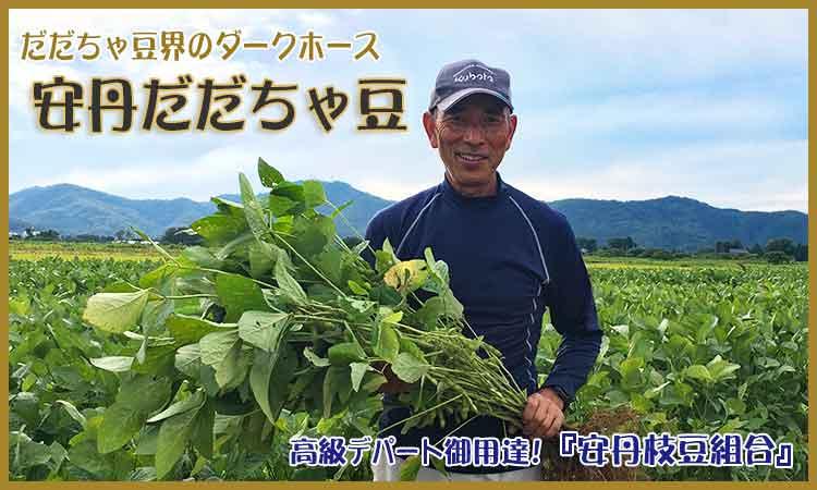 安丹だだちゃ豆農家 藤原さん