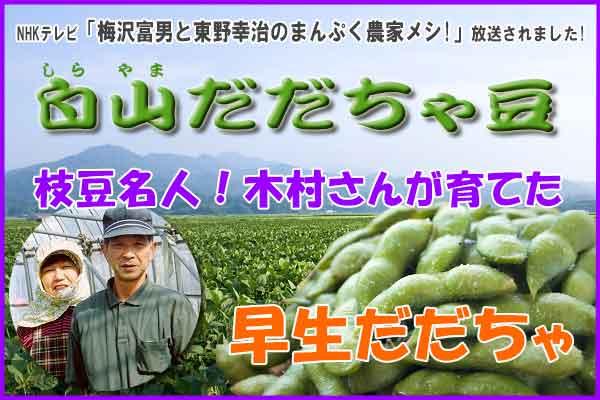 木村さんの早生だだちゃ豆 1.8Kg