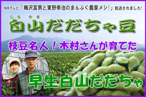 木村さんの早生白山だだちゃ豆 1.8Kg