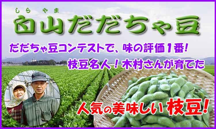 人気の枝豆 木村さんの白山だだちゃ豆