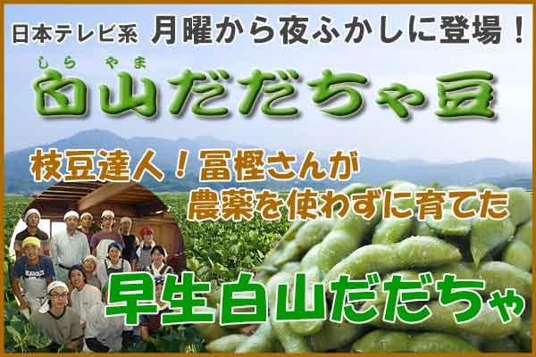 冨樫さんの早生白山だだちゃ豆 1.8Kg