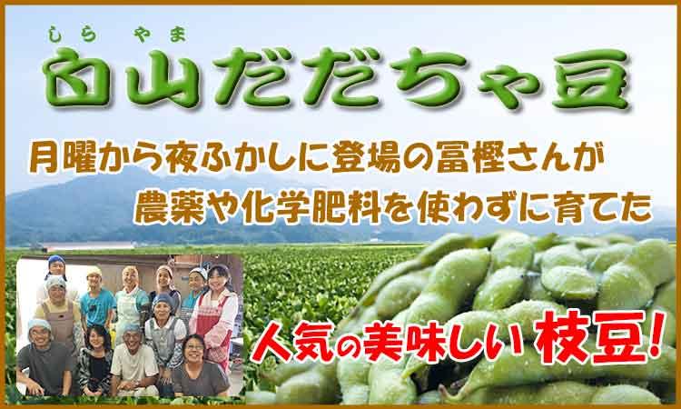 人気の枝豆 冨樫さんの白山だだちゃ豆