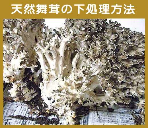 天然舞茸の下処理方法