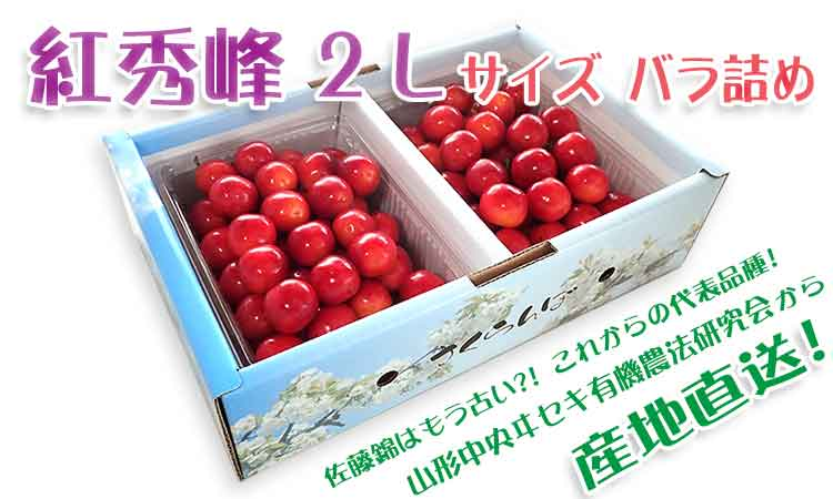 【秀】 紅秀峰 2Lサイズ (1Kgバラ詰)