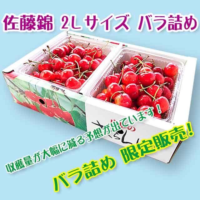 【秀】 佐藤錦 2Lサイズ (1Kgバラ詰) クール便