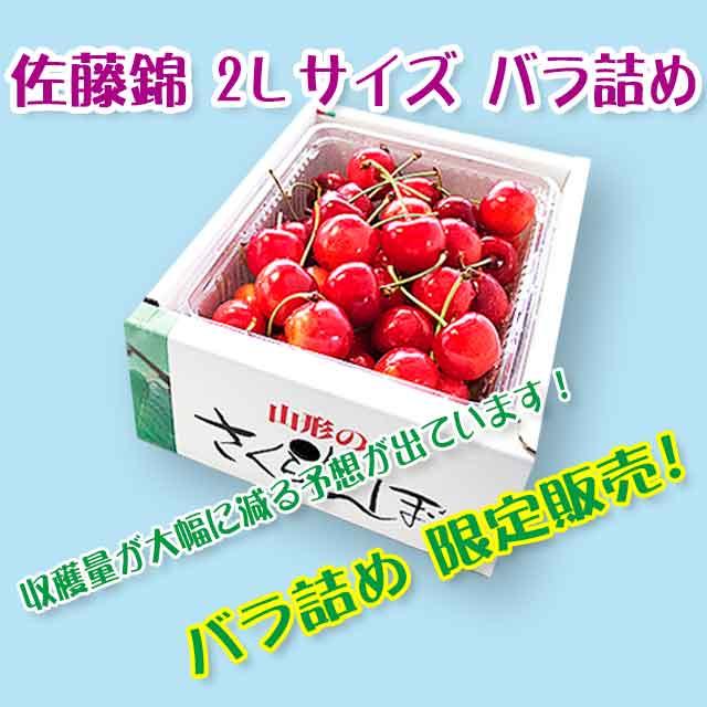 【秀】 佐藤錦 2Lサイズ (500gバラ詰) クール便