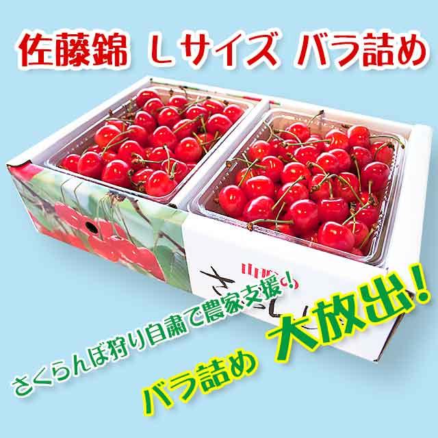 【秀】 佐藤錦 Lサイズ (1Kgバラ詰) クール便