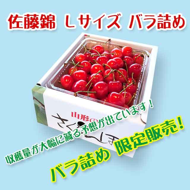 【秀】 佐藤錦 Lサイズ (500gバラ詰) クール便