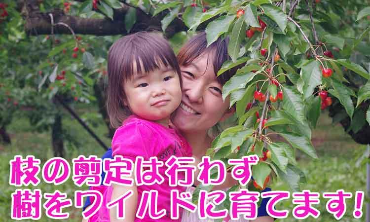 枝の剪定は行わず樹をワイルドに育てる