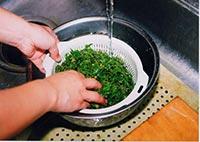 あけびの芽をざるにあげ、水気を固く絞ります。(食べる分だけ水からあげて、残りはそのまま水につけておきます)
