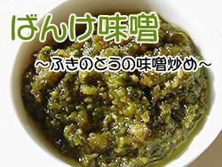 ばんけ味噌(ふきのとうみそ)