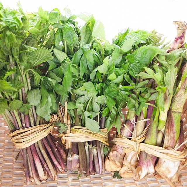 山菜トリオ セット