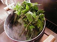 大きめの鍋にお湯を沸騰させ、しどけの根本を下にして入れます。